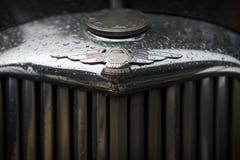 MOSKWA ROSJA, SIERPIEŃ, - 26, 2017: Jaguar samochodowy emblemat na rocznika ciemnym samochodowym zakończeniu Retro samochodu fest Zdjęcia Stock