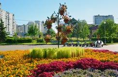 Moskwa Rosja, Wrzesień, - 01 2016 kwiatu łóżko w Zelenograd w Moskwa, Rosja Zdjęcie Royalty Free