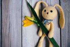 Moskwa, Rosja - 06 05 2018: zabawkarska zając z bukietem leluje na drewnianym tle, prezent dla dziecka obraz stock