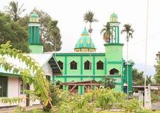 Mosquée avec des minarets images stock