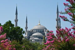 Mosquée bleue Image stock