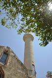Mosquée chez la dinde photos libres de droits
