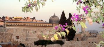 Mosquée d'Al-Aqsa Photo libre de droits