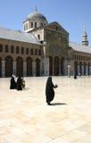 Mosquée d'Umayyad Images libres de droits