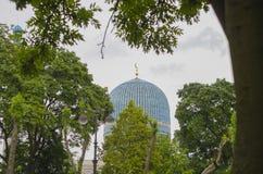 Mosquée de St Petersburg Images libres de droits