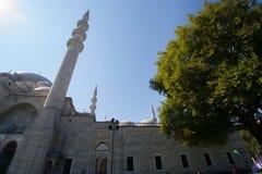 Mosquée de Suleimania Image stock