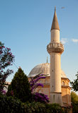 Mosque. Beautiful mosque with blue sky Stock Image