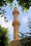 Mosque. A minaret of a mosque framed by foliage, photo taken in Lebanon Royalty Free Stock Images