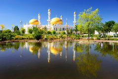 The Mosque royalty free stock image