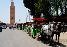 Mosque and carriages in Marrakech Stock Images