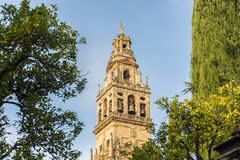 Mosque Cathedral of Cordoba in Andalusia, Spain Royalty Free Stock Photos