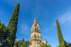 Mosque Cathedral of Cordoba in Andalusia, Spain Stock Photo