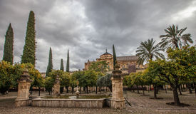 Mosque-Cathedral of Cordoba II Stock Photography