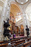 Cathedral of Cordoba Stock Photos