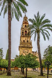 Mosque Cathedral of Cordoba, Spain. Mosque Cathedral of Cordoba also known as the Great Mosque of Cordoba  is regarded as one of the most accomplished monuments Royalty Free Stock Photos