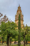 Mosque Cathedral of Cordoba, Spain. Mosque Cathedral of Cordoba also known as the Great Mosque of Cordoba  is regarded as one of the most accomplished monuments Stock Photography