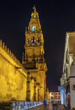 Mosque Cathedral of Cordoba, Spain Stock Image