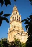 Mosque-Cathedral of Cordoba in Spain Royalty Free Stock Images