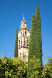 Mosque-Cathedral of Cordoba in Spain. Bell tower of Mosque and Cathedral of our Lady of the Assumption in Cordoba, Andalucia, Spain Stock Photo
