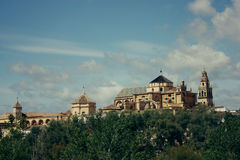 Mosque Cathedral in Cordoba, Spain. View of Mosque Cathedral in Cordoba, Spain Royalty Free Stock Image