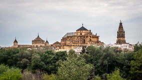 Mosque of Cordoba Royalty Free Stock Images