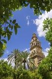 Mosque in Cordoba Stock Photos
