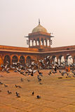 Mosque. Doves eat millet, peace and quiet Royalty Free Stock Image