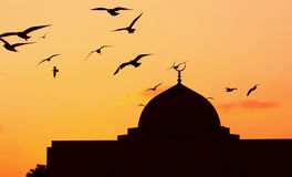 Mosque. In the evening birds flying Stock Photo
