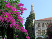 The Mosque and the Flowers. An old mosque in the old town of Kos, Greece, with bougainvillea flowers in the foreground stock photo