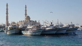 Mosque In Hurghada stock video footage