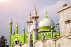 Mosque in India Royalty Free Stock Images