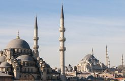 Mosque in istanbul Royalty Free Stock Photography