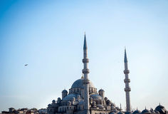 Mosque in Istanbul Stock Image