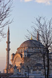Mosque of the Istanbul Royalty Free Stock Image