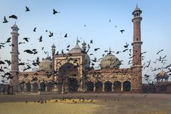 The mosque Jama Masjid in Delhi Royalty Free Stock Image