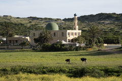 Mosque in Macassar Western Cape South Africa Stock Images