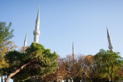 Mosque minarets behind trees Stock Photography