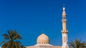 The mosque and palm trees Stock Photo
