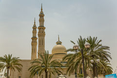 Mosque with palms Stock Images