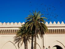 Mosque stillife with swarm of birds in africa stock images