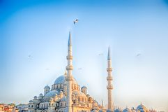 Mosque in a sunny day Stock Photo