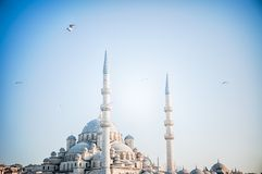 Mosque in a sunny day Royalty Free Stock Photo