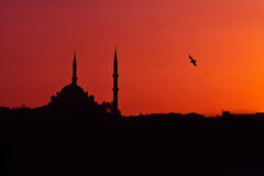 Mosque Sunset Stock Images