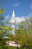 Mosque in Valea Dacilor Stock Photos