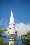 Mosque in Valea Dacilor Royalty Free Stock Images