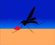 Mosquito 2 Stock Images