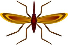 Mosquito. Color mosquito on white background vector illustration