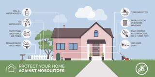 Mosquito bite prevention infographic. Protect your home and environment from mosquitoes vector illustration
