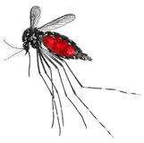 Mosquito -bloody. Sanguineous Royalty Free Stock Photo