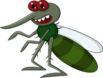 Mosquito cartoon Stock Photo